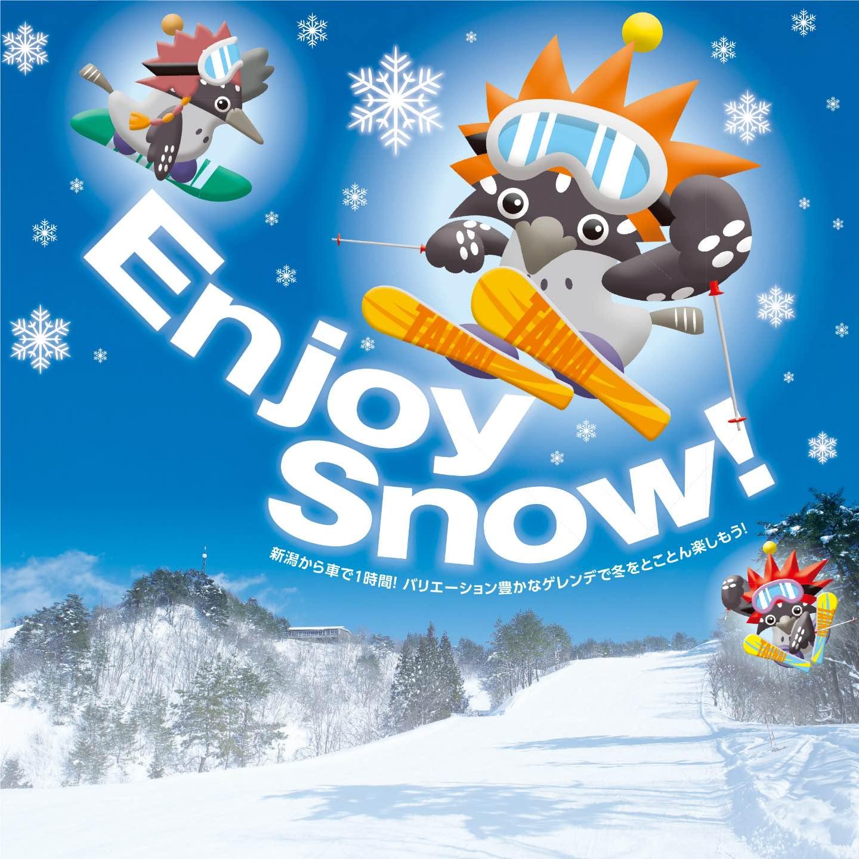 Enjoy Snow!