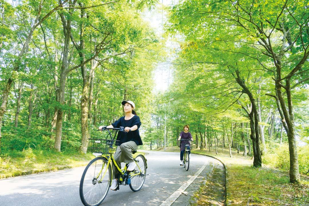 爽やかな秋の森を自転車で駆け抜ける様子
